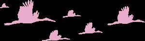 ooievaar-utrecht-trouwkaarten-geboortekaartjes